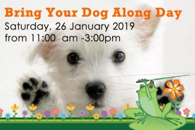 Bring your dog along day - the green frog moffat