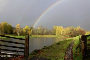 Moffat Fishery - Your pot of gold at the end of a rainbow