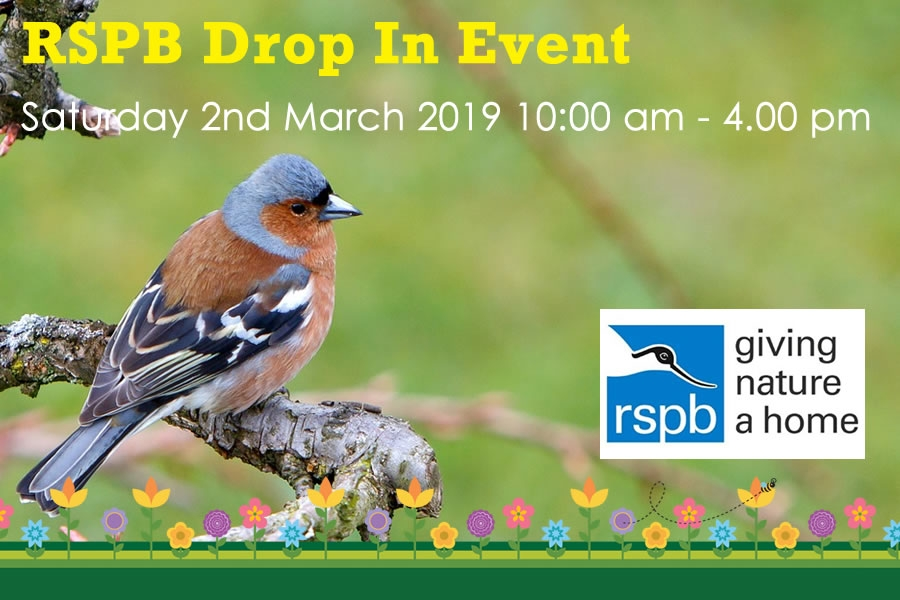 RSPB drop in at the Green Frog Moffat